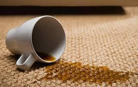 Stain removal Carpet Cleaning Cleaners  in Lydney, Longford, Longlevens, Elmbridge, Barnwood, Tuffley