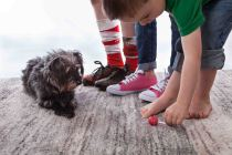 Asthma Pet Children Clean Carpets Stain Removal Cheltenham Gloucester Tewkesbury Stroud